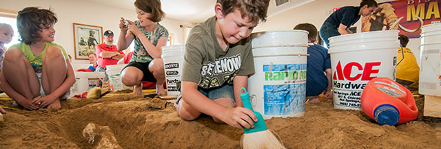 Junior Paleontologists